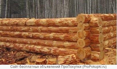 Срубы сосновые из Бурзянского района под дома.Новые.Любые