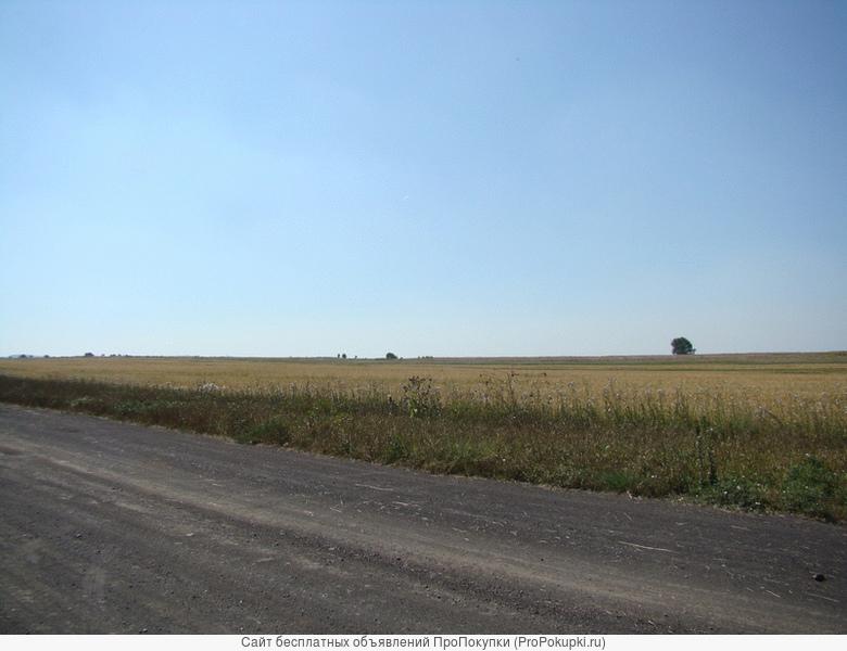 Продам земельный массив 295,28 гектаров под усадьбу, дачи