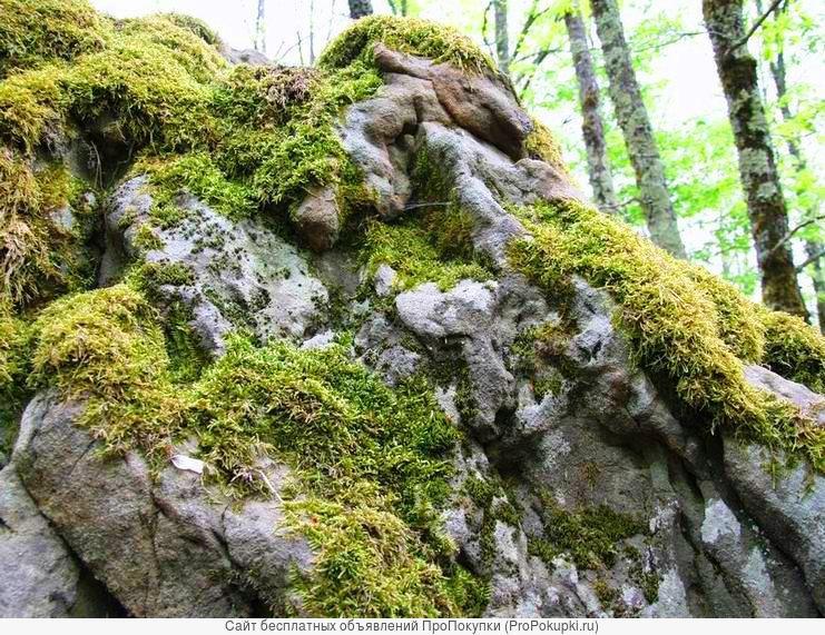 Продажа природного камня