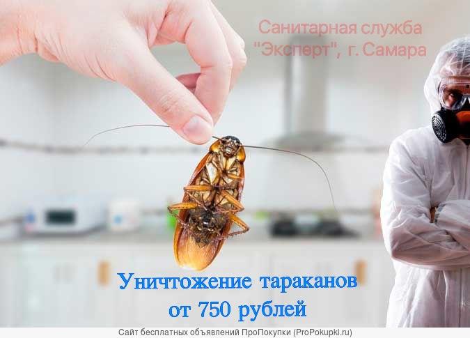 Морить тараканов в Самаре генератором холодного тумана 100%