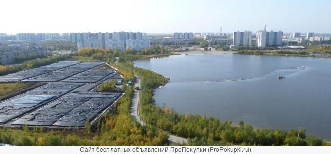 Оборудование и проект очистки городских водоемов