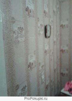 3 комнатная квартира СЖМ / Борко