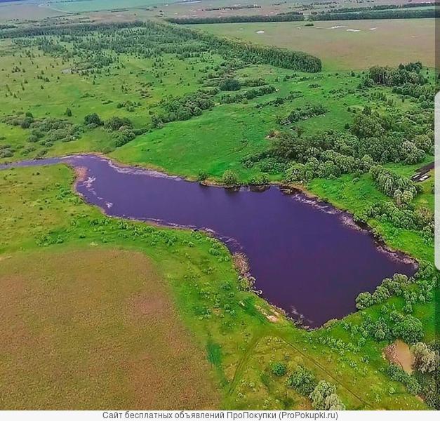 земельный участок с прудом