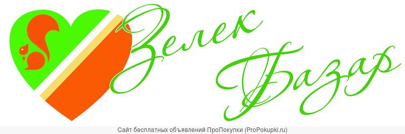 Зеленоград инфо - новости Зеленограда