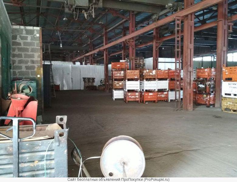 Производственное помещение, 300 м²