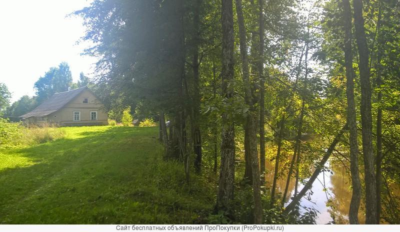 Шикарный жилой хуторок на берегу реки Утроя