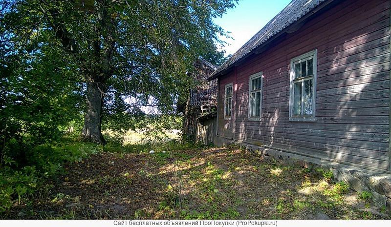 Уютный жилой хуторок в приграничной зоне на берегу водоёма